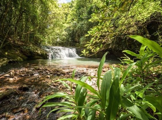 Ecoparque Sperry - Foto 1 de 1