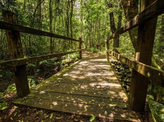 Ecoparque Sperry - Foto 10 de 1