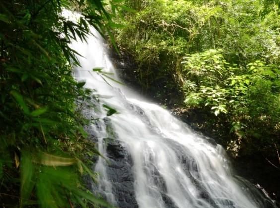 Ecoparque Sperry - Foto 13 de 1