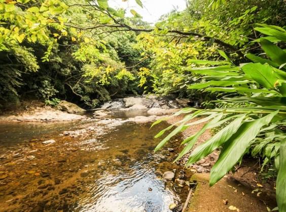 Ecoparque Sperry - Foto 4 de 1