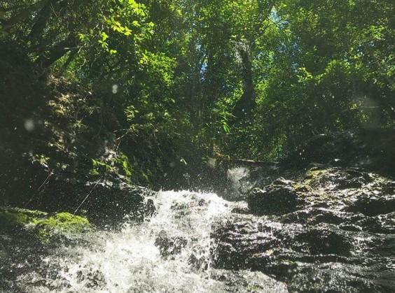 Ecoparque Sperry - Foto 7 de 1