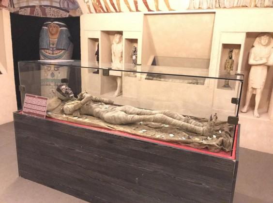 Museu Egípcio - Foto 8 de 1