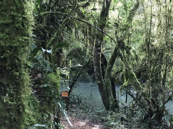 Pé da Cascata Explorer - Foto 3 de 1