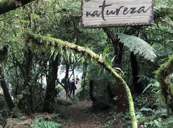 Pé da Cascata Explorer - Foto 9 de 1